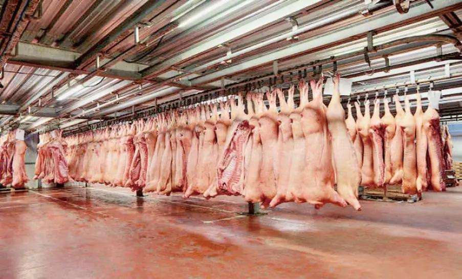 东莞一品肉类供应一级冷鲜肉18925805168